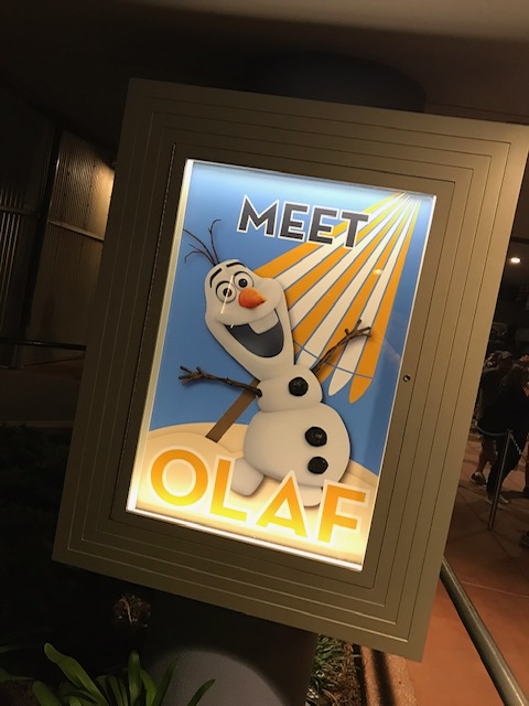 encontro personagens Olaf - Disney Hollywood Studios